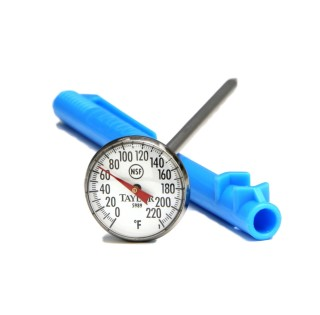 Taylor 5989N Thermometer